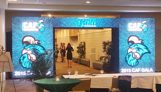 Video Wall Entrance